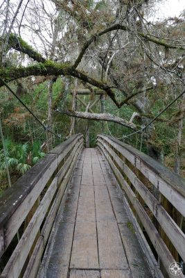 Bridge across the Hillsborough River