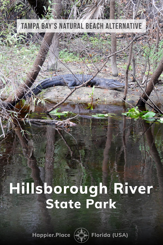 Tampa Bay\'s Natural Beach Alternative: Hillsborough River State Park (Florida)
